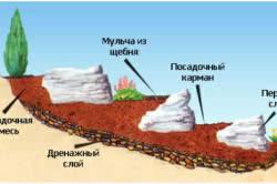 Пошаговая инструкция по созданию альпийской горки