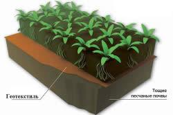 Использование геотекстиля в почве
