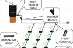 Схема капельной системы полива