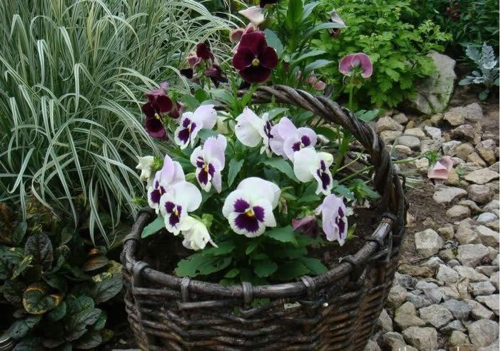 Корзинки для цветов своими руками из подручных материалов