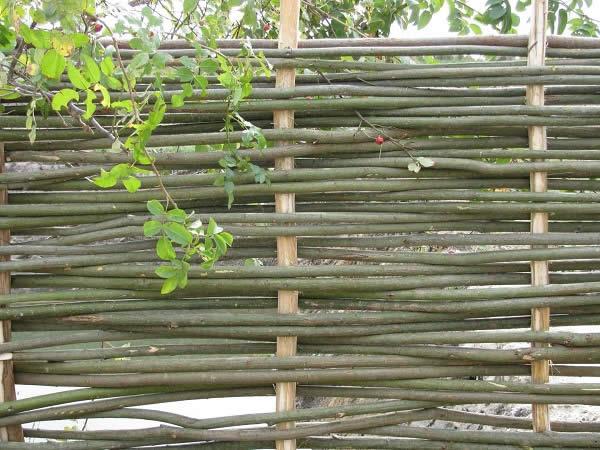 забор плетенка из прутьев
