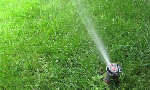 Полив газона