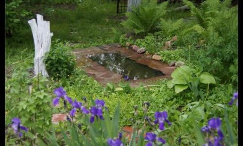 Пример пруда на даче с примерением старой ванны