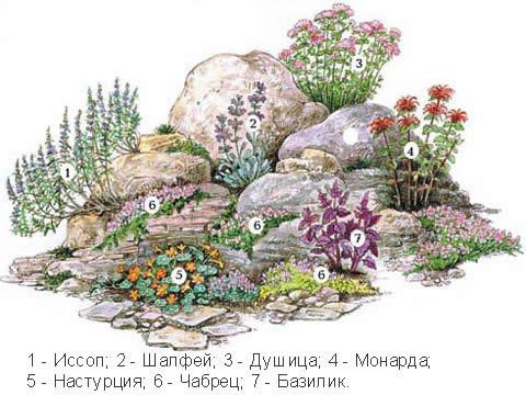Альпинарий пошаговое фото схемы