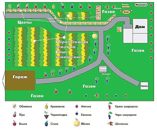 Схема правильного расположения садового участка