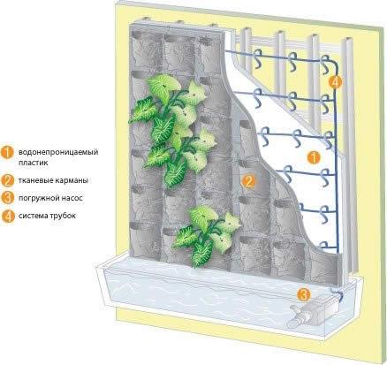 Устройство стеновой конструкции вертикального сада.