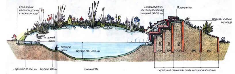 Схема устройства пруда с