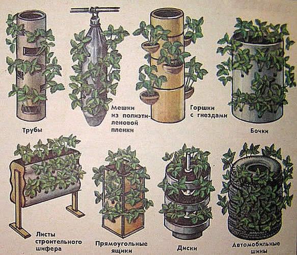 Варианты изготовления вертикальной клумбы из подручных материалов..
