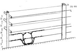 Схема монтажа шпалеры из шпагата для кустов малины