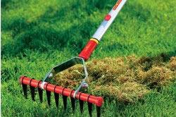 Прочищение травы граблями.