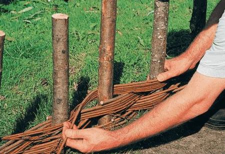 Как правильно из лозы плести изгородь