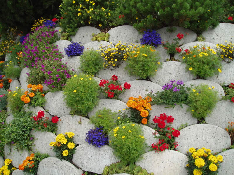 За час озеленители посадили 86 цветов это