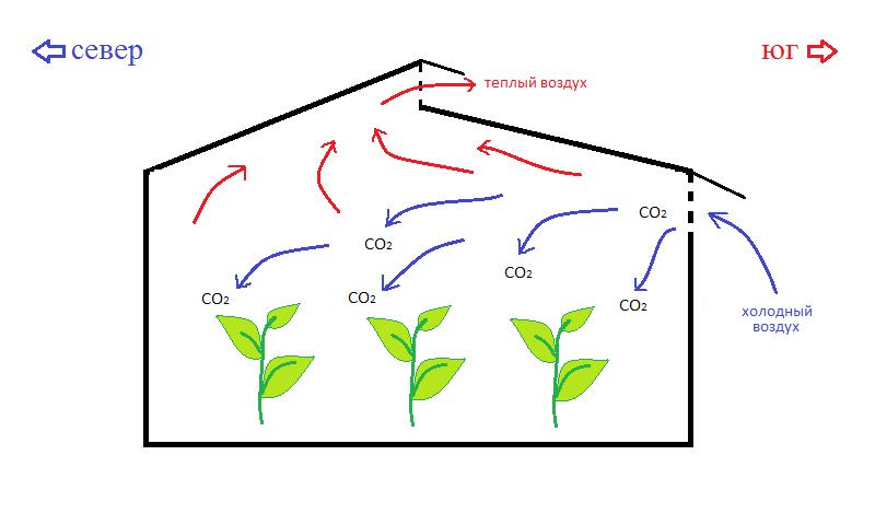 Биотехнологическая схема