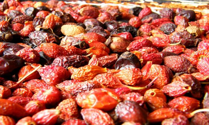 Для приготовления эко-кормушки используют сухие ягоды